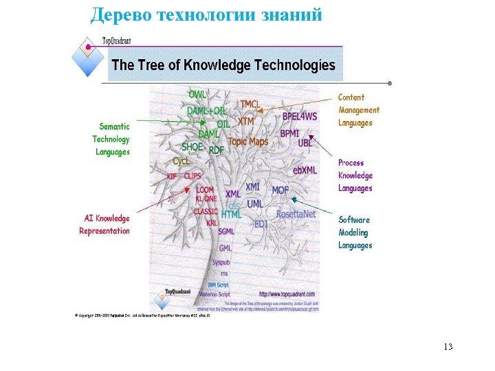 Дерево технологии знаний 13