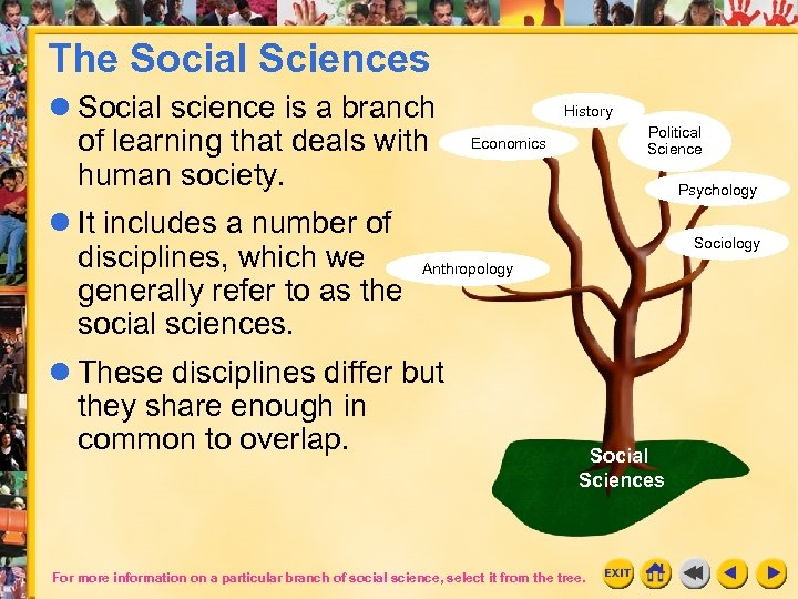 The Social Sciences Social science is a branch of learning that deals with human