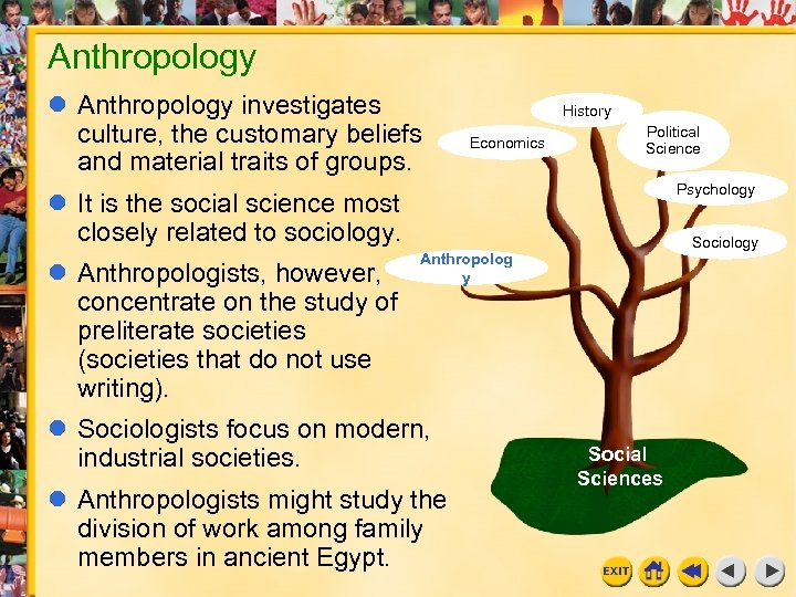 Anthropology investigates culture, the customary beliefs and material traits of groups. History Economics Political