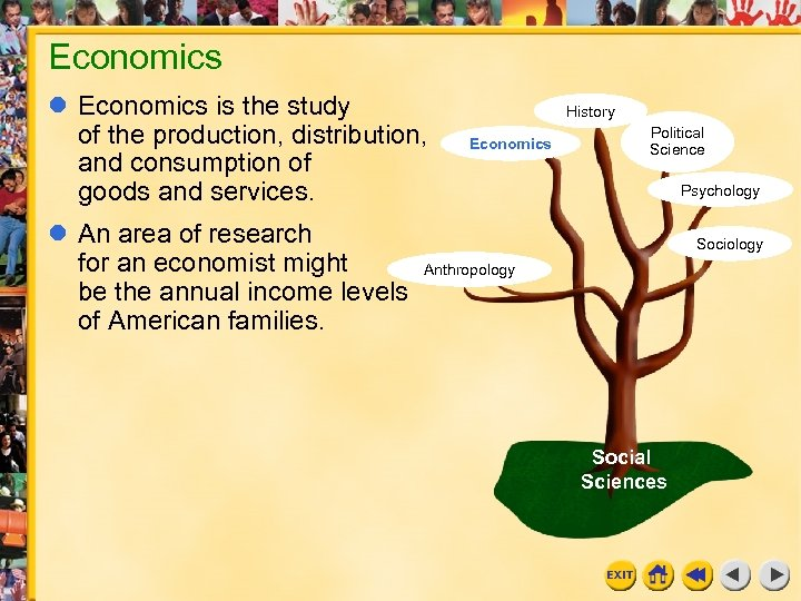 Economics is the study of the production, distribution, and consumption of goods and services.