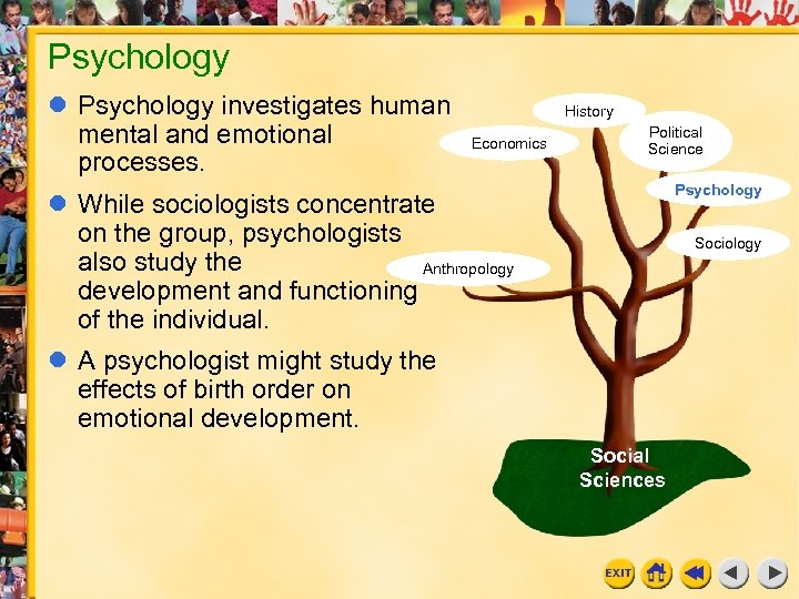 Psychology investigates human mental and emotional processes. History Economics Political Science Psychology While sociologists