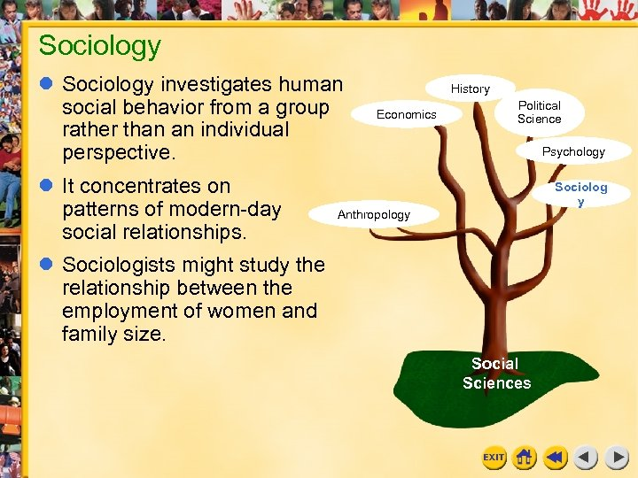 Sociology investigates human social behavior from a group rather than an individual perspective. It