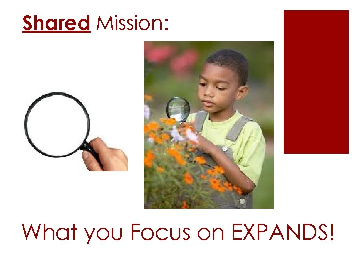 Shared Mission: What you Focus on EXPANDS!