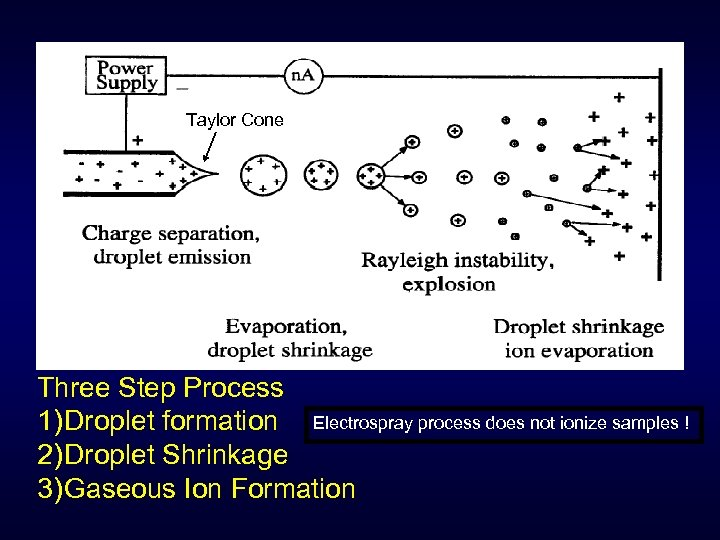 Taylor Cone Three Step Process 1) Droplet formation Electrospray process does not ionize samples