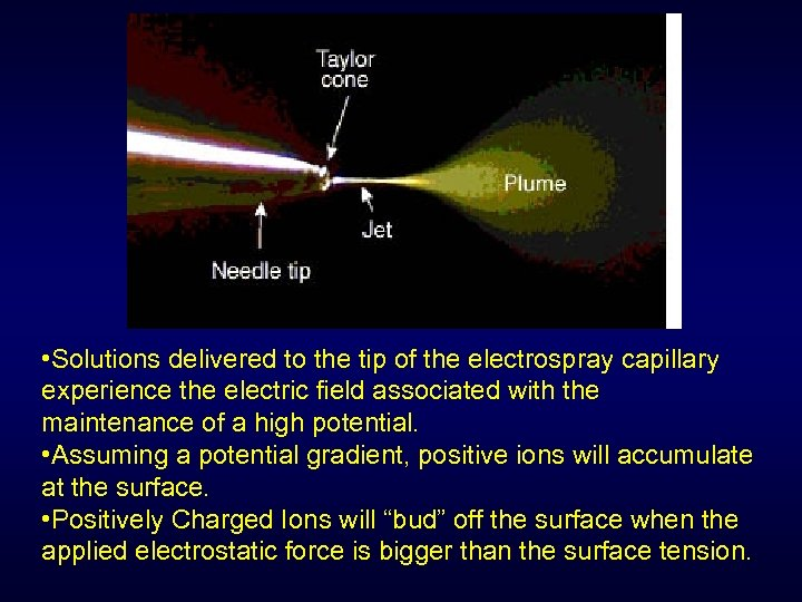 • Solutions delivered to the tip of the electrospray capillary experience the electric