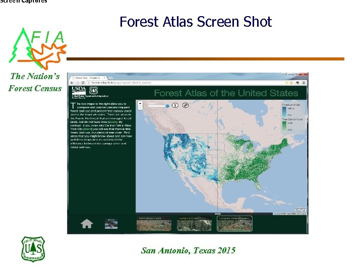 Screen Captures FIA Forest Atlas Screen Shot The Nation's Forest Census San Antonio, Texas