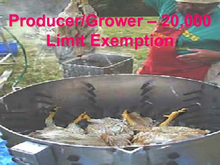 Producer/Grower – 20, 000 Limit Exemption 40