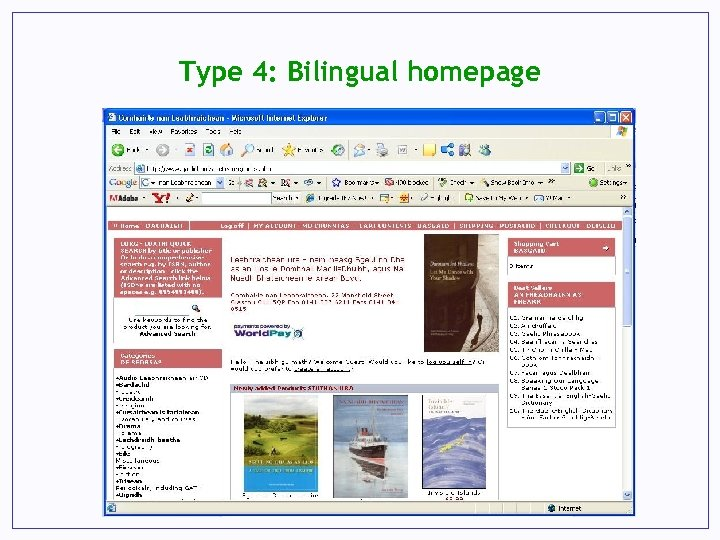 Type 4: Bilingual homepage