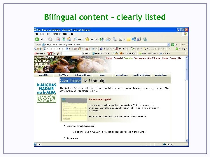 Bilingual content – clearly listed