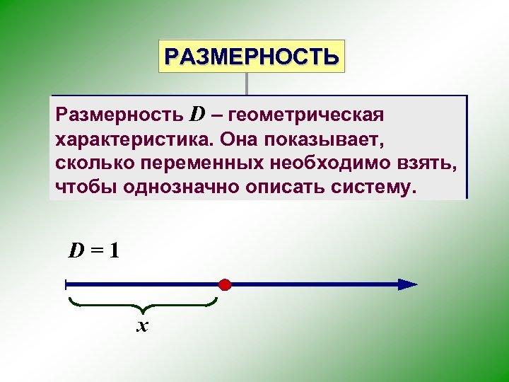 РАЗМЕРНОСТЬ Размерность D – геометрическая характеристика. Она показывает, сколько переменных необходимо взять, чтобы однозначно