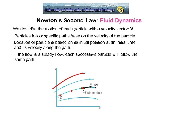 Newton's Second Law: Fluid Dynamics We describe the motion of each particle with a