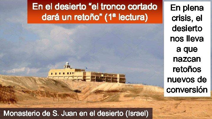 """En el desierto """"el tronco cortado dará un retoño"""" (1ª lectura) Monasterio de S."""