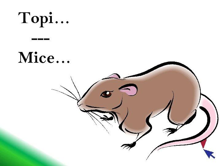 Topi… --Mice…