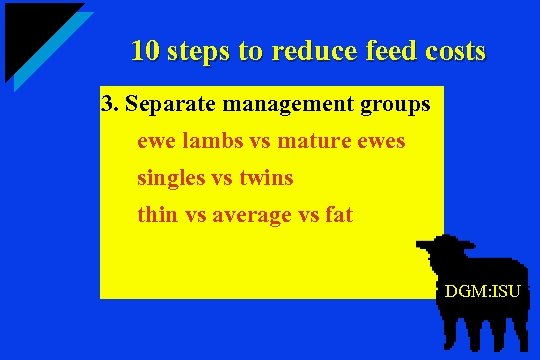 10 steps to reduce feed costs 3. Separate management groups ewe lambs vs mature