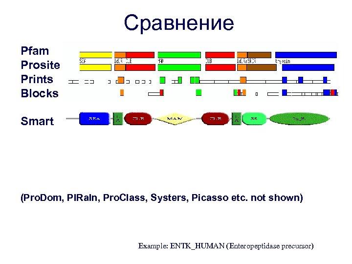Сравнение Pfam Prosite Prints Blocks Smart (Pro. Dom, PIRaln, Pro. Class, Systers, Picasso etc.