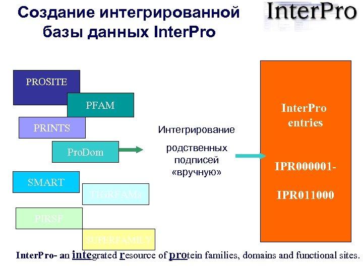 Создание интегрированной базы данных Inter. Pro PROSITE PFAM PRINTS Интегрирование Pro. Dom SMART TIGRFAMs