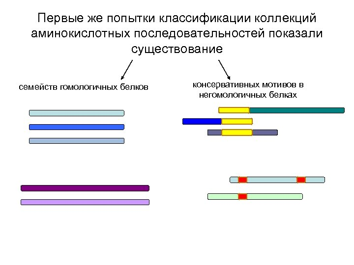 Первые же попытки классификации коллекций аминокислотных последовательностей показали существование семейств гомологичных белков консервативных мотивов