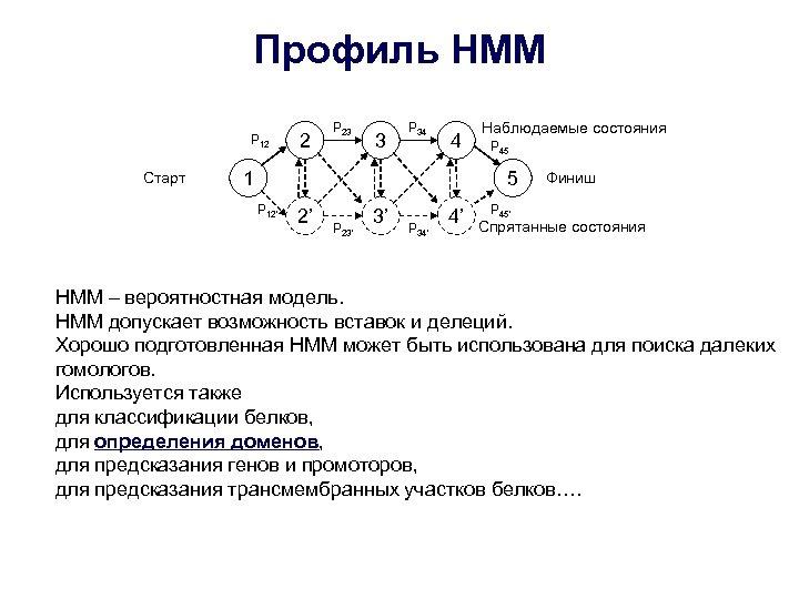 Профиль HMM P 12 Старт 2 P 23 3 P 34 4 1 Наблюдаемые