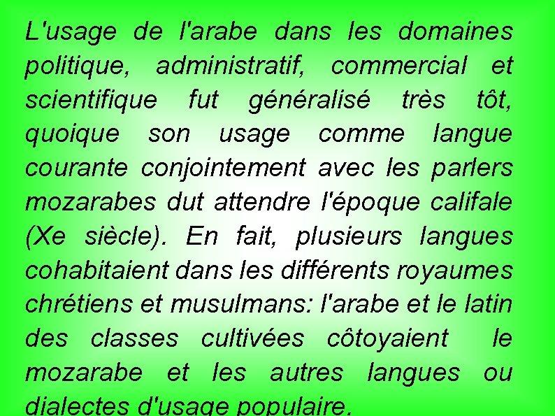 L'usage de l'arabe dans les domaines politique, administratif, commercial et scientifique fut généralisé très