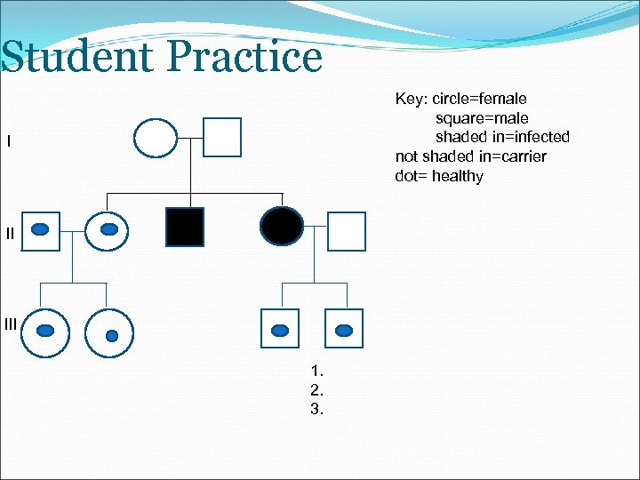 Student Practice Key: circle=female square=male shaded in=infected not shaded in=carrier dot= healthy I II