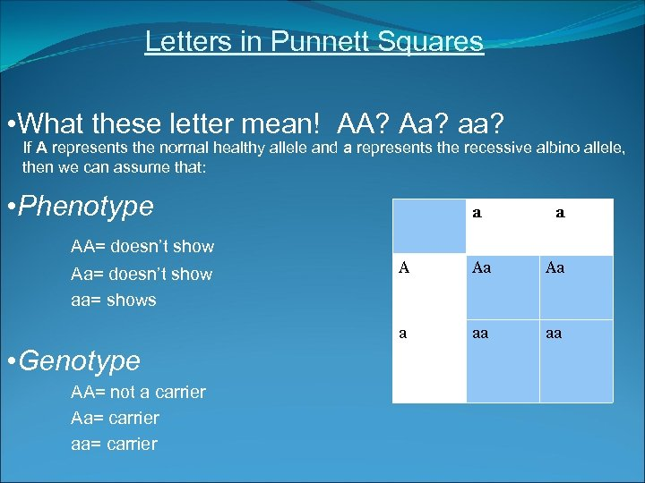 Letters in Punnett Squares • What these letter mean! AA? Aa? aa? If A