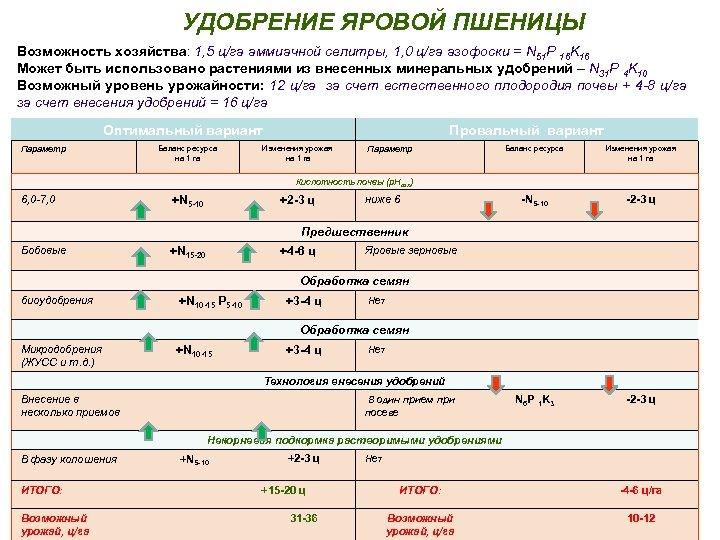 УДОБРЕНИЕ ЯРОВОЙ ПШЕНИЦЫ Возможность хозяйства: 1, 5 ц/га аммиачной селитры, 1, 0 ц/га азофоски