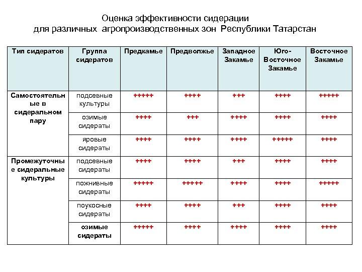 Оценка эффективности сидерации для различных агропроизводственных зон Республики Татарстан Тип сидератов Группа сидератов Предкамье