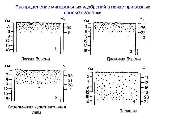 Распределение минеральных удобрений в почве при разных приемах заделки % см Легкая борона см