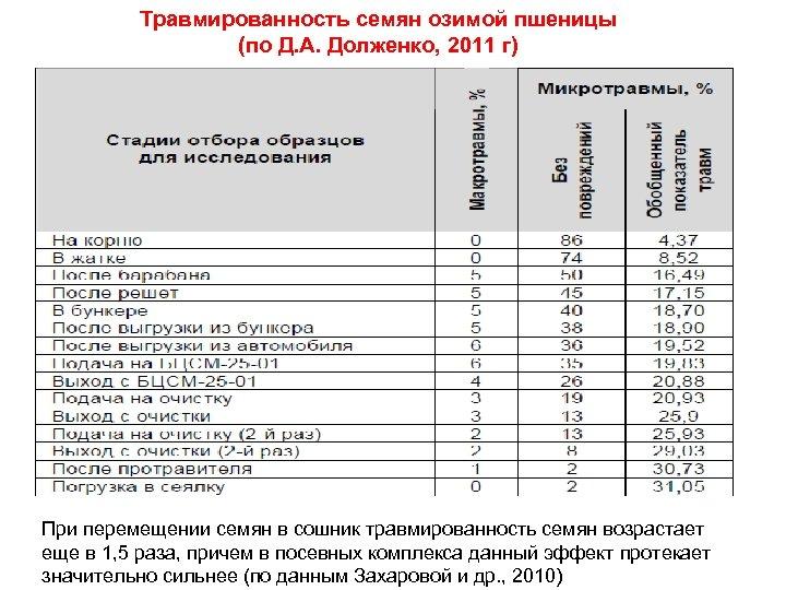 Травмированность семян озимой пшеницы (по Д. А. Долженко, 2011 г) При перемещении семян в