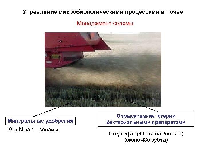Управление микробиологическими процессами в почве Менеджмент соломы Минеральные удобрения 10 кг N на 1