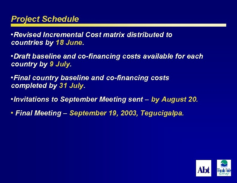 Project Schedule • Revised Incremental Cost matrix distributed to countries by 18 June. •