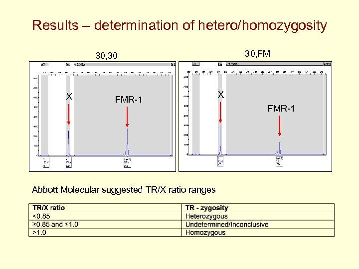 Results – determination of hetero/homozygosity 30, FM 30, 30 X FMR-1 Abbott Molecular suggested