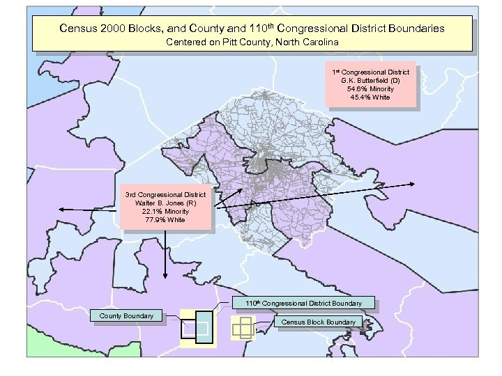 Census 2000 Blocks, and County and 110 th Congressional District Boundaries Centered on Pitt