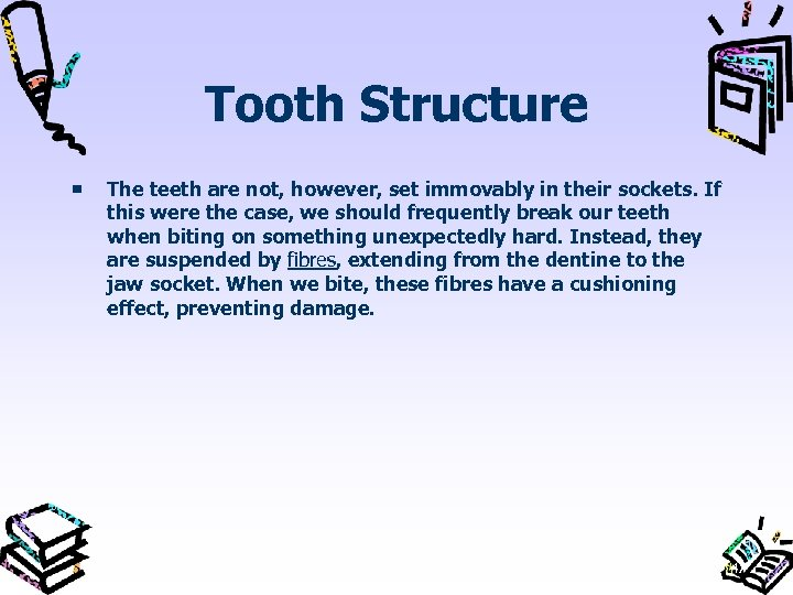 Tooth Structure The teeth are not, however, set immovably in their sockets. If this