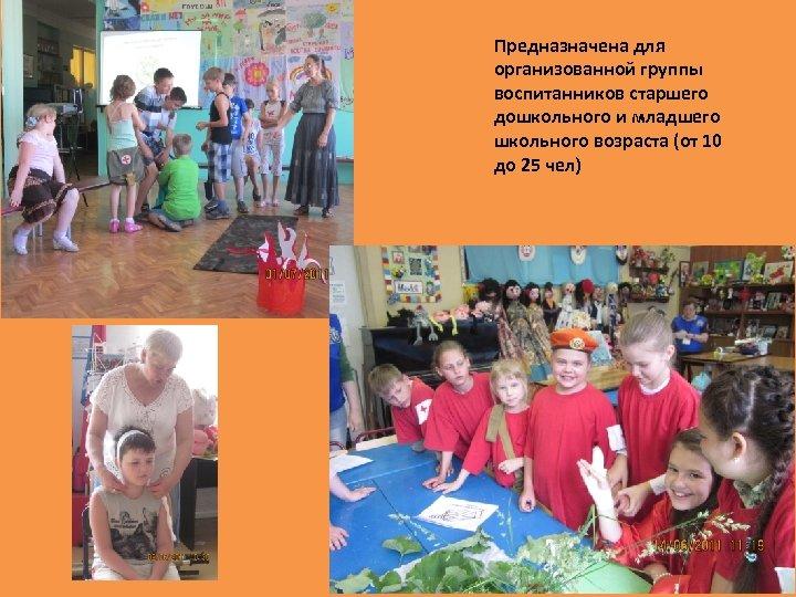 Предназначена для организованной группы воспитанников старшего дошкольного и младшего школьного возраста (от 10 до