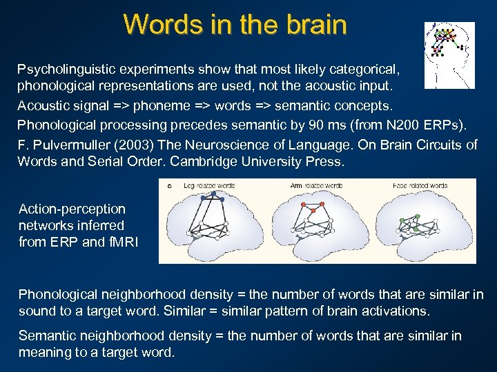 Words in the brain Psycholinguistic experiments show that most likely categorical, phonological representations are