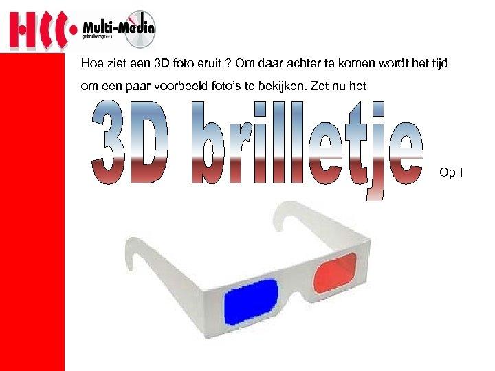 Hoe ziet een 3 D foto eruit ? Om daar achter te komen wordt