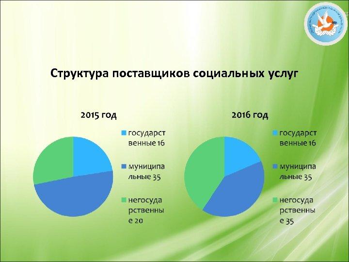Структура поставщиков социальных услуг