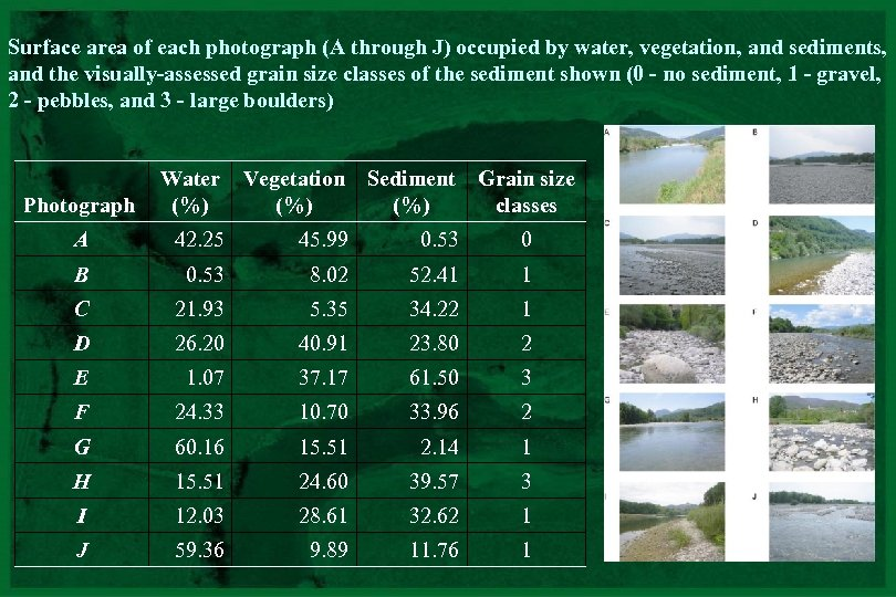 Surface area of each photograph (A through J) occupied by water, vegetation, and sediments,