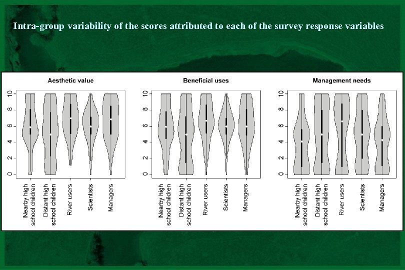 Intra-group variability of the scores attributed to each of the survey response variables CNRS