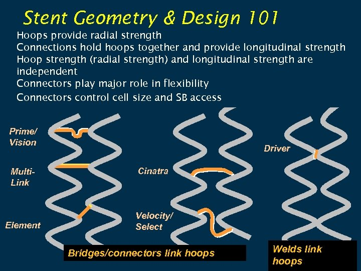 Stent Geometry & Design 101 Hoops provide radial strength Connections hold hoops together and