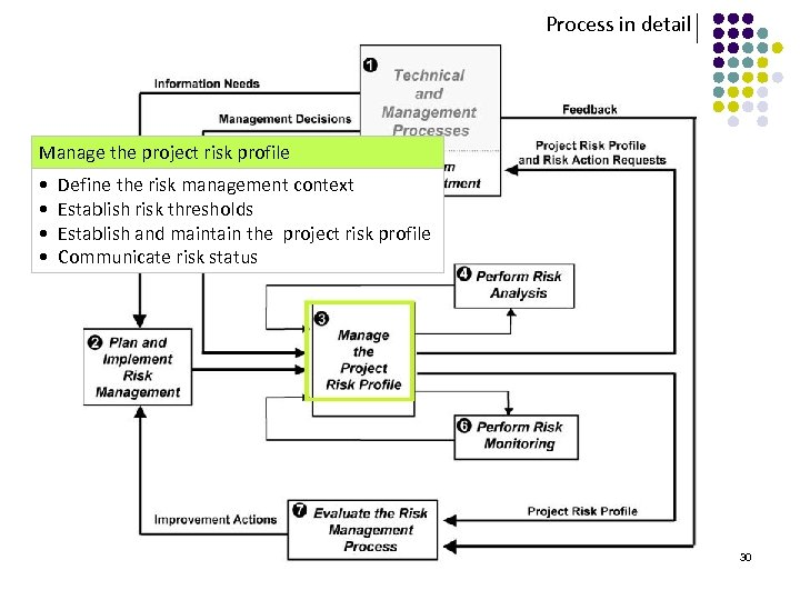 Process in detail Manage the project risk profile • Define the risk management context