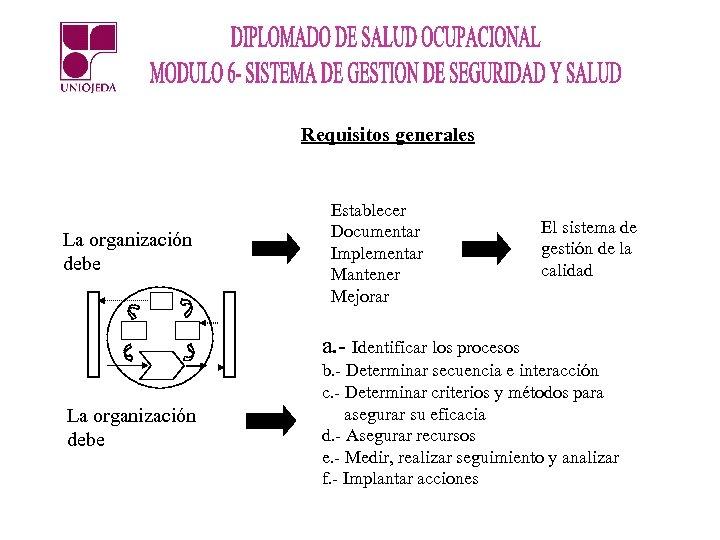 Requisitos generales La organización debe Establecer Documentar Implementar Mantener Mejorar El sistema de gestión