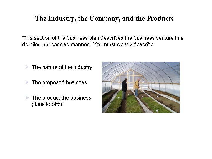 The Industry, the Company, and the Products This section of the business plan describes