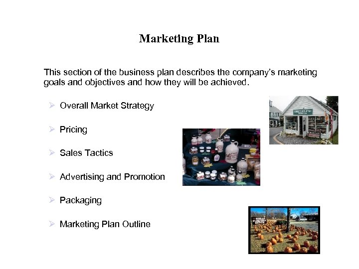 Marketing Plan This section of the business plan describes the company's marketing goals and