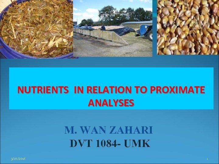 NUTRIENTS IN RELATION TO PROXIMATE ANALYSES M. WAN ZAHARI DVT 1084 - UMK 3/16/2018