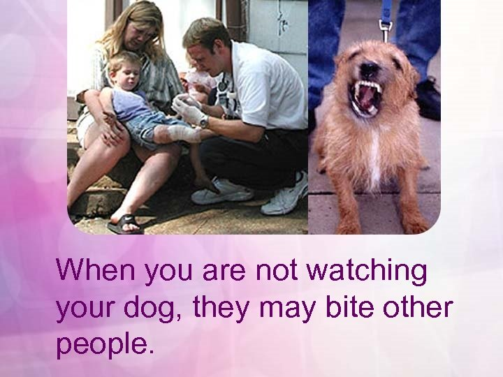 When you are not watching your dog, they may bite other people.
