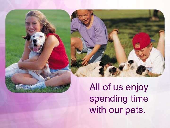 All of us enjoy spending time with our pets.