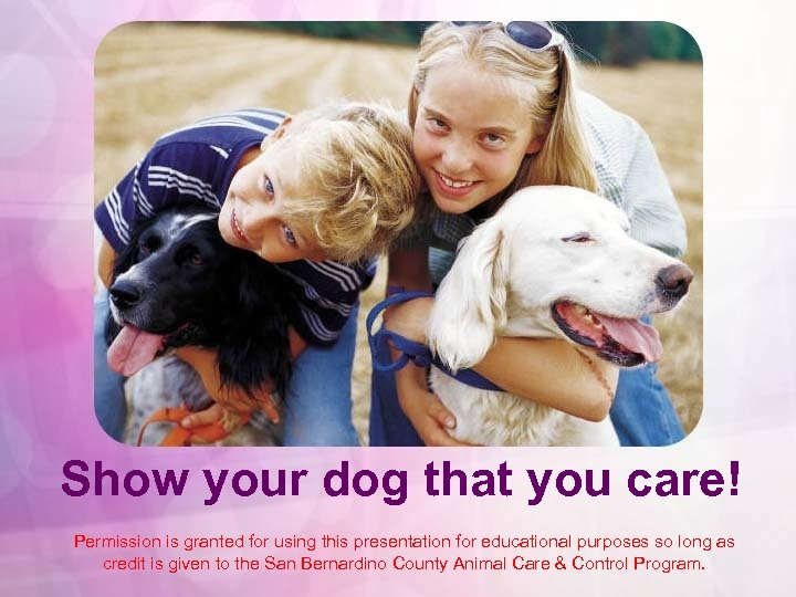 Show your dog that you care! Permission is granted for using this presentation for