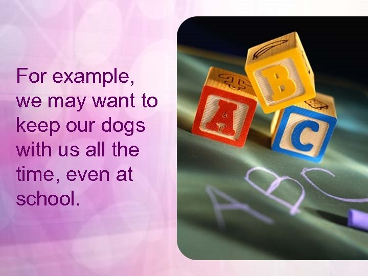 For example, we may want to keep our dogs with us all the time,